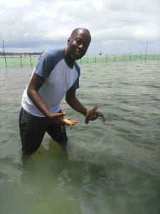 Unser wichtigster Helfer von Kilimani City - Daudi - bei der Arbeit für die Seegurken-Kooperative