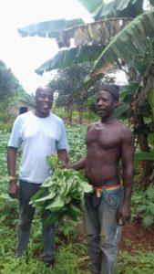 Ein Mitglied der Landwirtschaftskooperative und Daudi von unserem Partner Verein Kilimani City